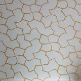 Glace colorée de gâchage neuve d'art d'impression pour l'usage de construction