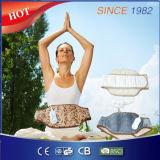 Courroie de massage électrique à lame / taille / taille / ceinture amincissante / ceinture électrique