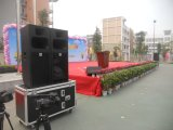 De Hoorn van de Hoge Macht van de karaoke de Sprekers van 600 Watts