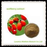 Hoher Qualtiy natürlicher Wolfberry Auszug