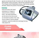 Slimming portatif Beauty Equipment pour All Age (ETG17)