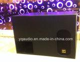 PS15 BerufsSubwoofer Speaker/Monitor Lautsprecher