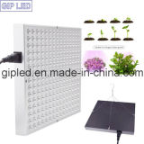 庭GreenhouseのためのGip Red Blue 45W LED Grow Lights