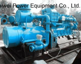 Chp-grünes energieerzeugendes Kraftwerk