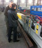Rodillo de los listones de la puerta del obturador del laminado de acero del hierro que forma precios de la máquina