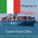 Carga mundial do mar do transporte FCL LCL do Inc da logística do frete de mar de China a Nápoles, Italy