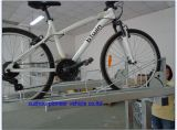 Cremalheira dobro galvanizada da bicicleta do estacionamento da plataforma