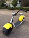 Scooter eléctrico Halley Scooter de 1000W Scooter caliente ATV de venta con rueda grande