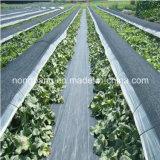 Weed Barrera de tela, tejida de poli mala hierba Mat de control, plástico cubierta de tierra, Gnew PP de tierra cubierta de tela