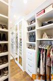 Прогулка Foshan в отраженном шкафе с серым стулом Quatrefoil (BY-W-20)
