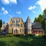 De buitenlandse Kanten die van het Perspectief van de Villa 3D Twee met Pool teruggeven