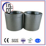 Femmina filettata accoppiamento completo forgiata dell'acciaio inossidabile di ASTM