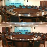 De Microfoon van de Zaal van de Vergadering van Singden met CCC, Ce. RoHS