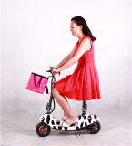 أسلوب شعبيّة سمين [إ] درّاجة, سمين كهربائيّة درّاجة ثلج [إبيك] مع [س] شهادة