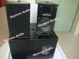 """ Altavoz audio profesional PS10 10"