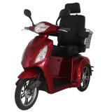 Un motorino elettrico delle 3 rotelle per gli adulti