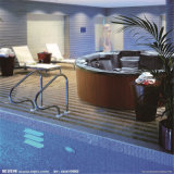 Draaikolk Bathtub met TV Massage Bathtub