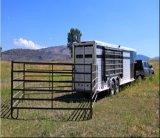 5foot*10foot 미국 이용한 가축은 또는 강철 가축 위원회 깐다