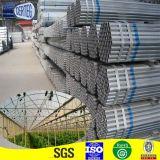 Metal galvanizzato Tube e Pipe