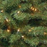 il PVC naturale di verde 7 capovolge l'albero di Natale con gli indicatori luminosi (MY100.057.00)