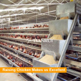 Un tipo strumentazione automatica utilizzata gabbia di allevamento di pollame del pollo del pollo di strato