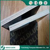 12mm 15mm 18mmのフィルムによって塗られる合板、Formplyの合板を防水しなさい