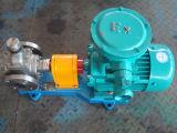 Ycb0.6-0.6ステンレス鋼アークギヤ油ポンプ