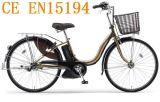 3 Vitesse Accessoires Vélos électriques (SN-003)