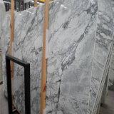 Tegels van de Plak van de Stad van Yunfu de In het groot Natuurlijke Marmer Opgepoetste, het Witte Marmer Arabescato van Italië