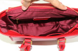 Eindeutige europäische Entwürfe der Klassiker-Handtaschen für Luxuxbeutel der Frauen