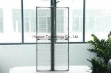 Afficheur LED transparent de P6mm pour la publicité de guichet en verre