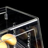 Vitrine d'affichage en biscuit acrylique de qualité supérieure
