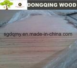 Hoja / madera contrachapada comercial de Shandong madera contrachapada con Tamaños estándar