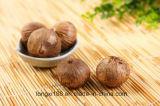 Здоровой заквашенный едой чеснок Balck, органический