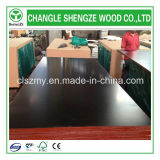 Phebolic Glue 18mm Marine Plywood