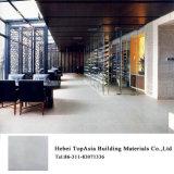 Utilisation rustique en céramique de maison de carrelage d'effet rustique d'usine