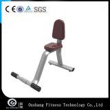 OS-9031 equipamento da ginástica da aptidão da extensão da parte traseira de 45 graus