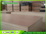 madera contrachapada comercial de 1220*2440*3m m Plywoodcommercial