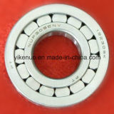 Cylindrical Roller Bearing (NUP210E)