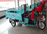 800W Cargo E-Motorcycle Tricycle Scooter per Adults