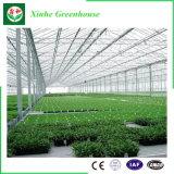Glastunnel-Gewächshaus für das Pflanzen