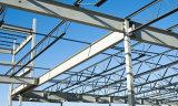 Almacén blanco de la estructura de acero de la luz del color hecho en China