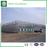 Glas/het Holle Aangemaakte Groene Huis van het Aluminium van het Glas voor Landbouw/Commercieel