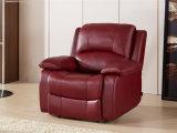 Wohnzimmer-echtes Leder-Sofa (C853)