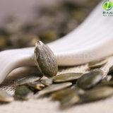 Graines de citrouille chinoises de Gws de nourriture biologique aa pour l'exportation