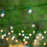 Ampoule approuvée d'espace libre de lumière de chaîne de caractères de l'UL G40 DEL pour la décoration