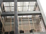 스테인리스 Laser에 의하여 잘리는 옥외 금속 스크린 중국제