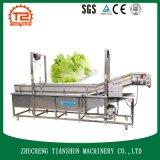 Arruela do vegetal de fruta do legume com folhas e máquina de lavar comerciais da bolha