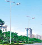 Réverbère économiseur d'énergie de la haute énergie IP65 20W 30W-200W DEL dans le réverbère solaire