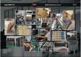 Грандиозное изготовление усилителя/профессиональная басовая головка усилителя, 200W (BA-200)